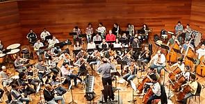 violines.png