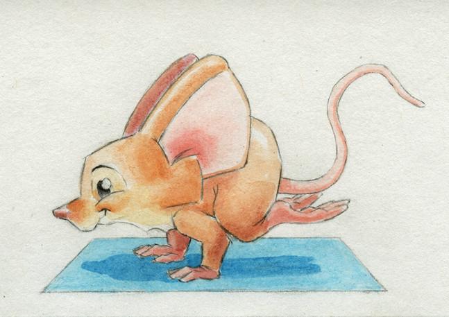 Yogi-Mouse-Crow-Pose-2021.jpg