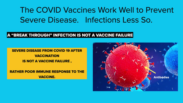Vaccine confusion: What determines Efficacy?