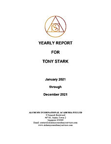 Yearly Report (FR) for Tony Stark_page-0