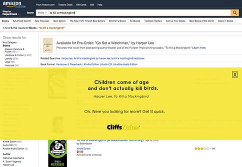 CliffsNotes Advertising Campaign Copywriter Boston