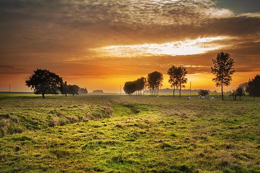 countryside-336686.jpg