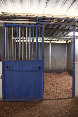 Box Stalls
