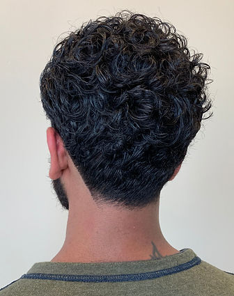 indian wavy man's hair, curly men's hair, midlength men's hair, modern men's hair, growing men's hair out, long hair with a tapered neckline