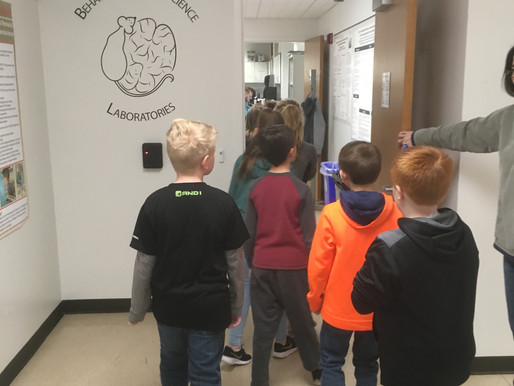 McMurray Lab hosts 4th graders