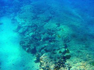 Ancient Stone Paths on the bottom of the sea in Alykanas, Zakynthos
