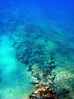 Ancient Stone Paths on the bottom of the sea in Alykanas, Zakynthos