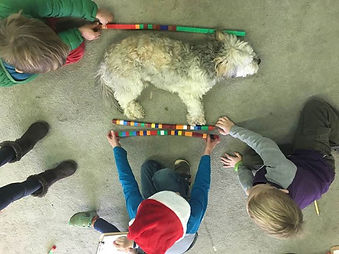 Non-standard canine measurement....jpg