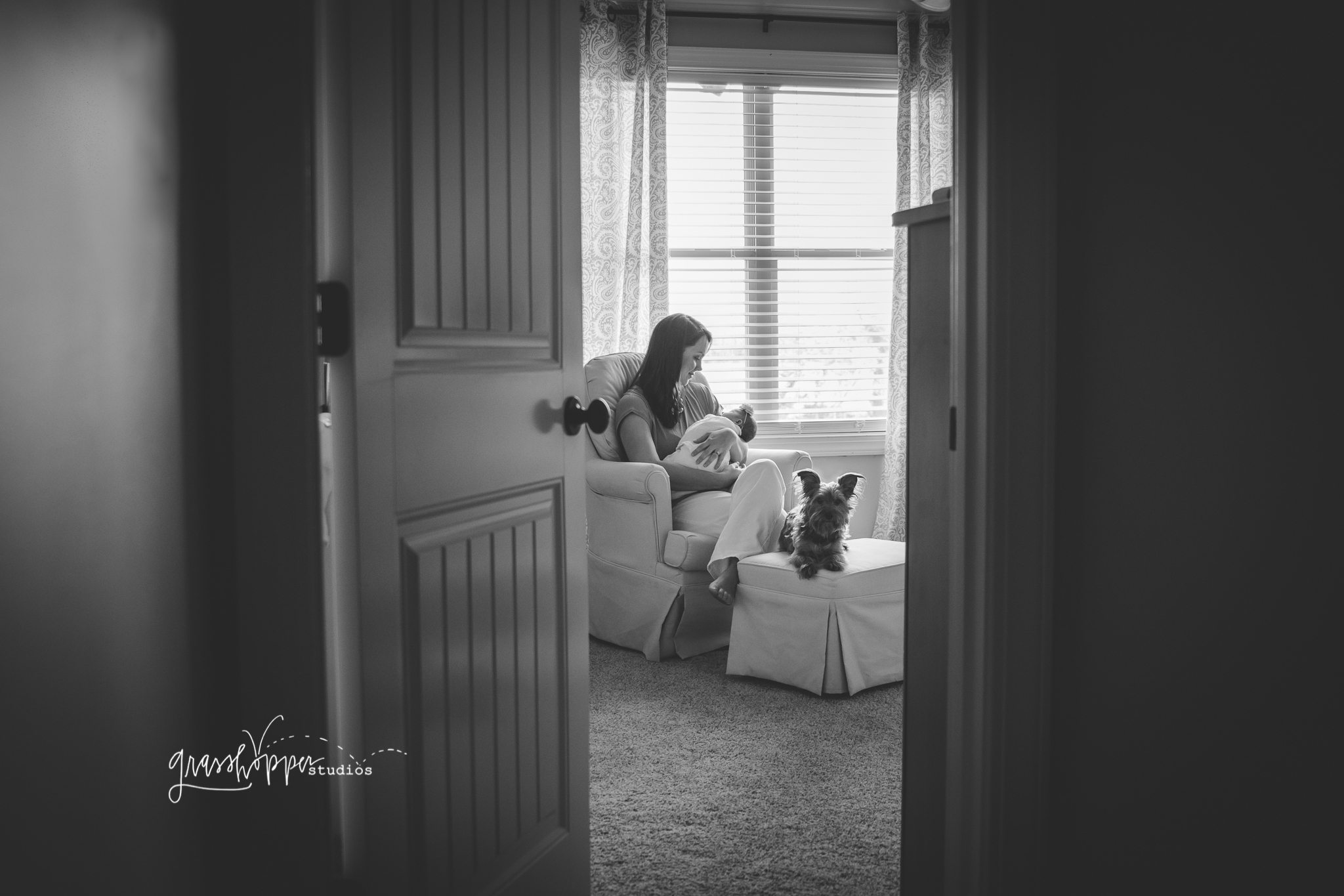 Jackson, TN newborn photographer