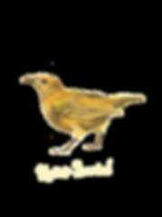 Vogelkop.png