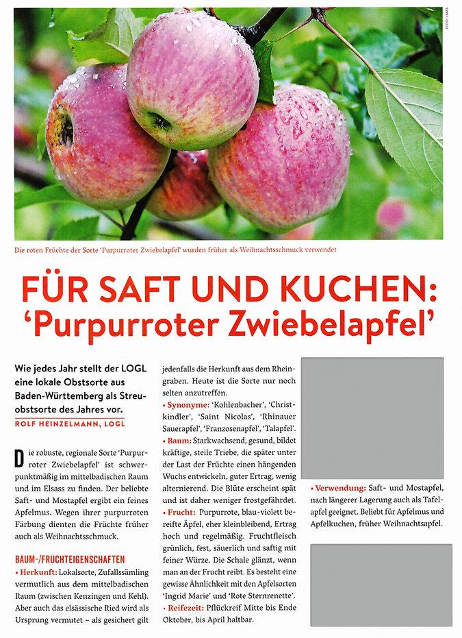 Zwiebelapfel1_edited.jpg