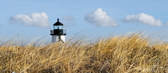 #0122 - Coming Upon Brant Point Panoramic