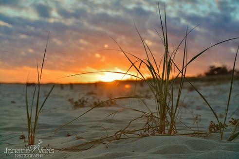 #0165 - Surfside Beach Grass Sunset