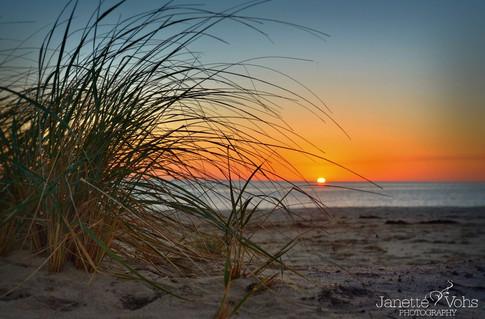 #0228 - Clark's Cove Beach Grass Sunset
