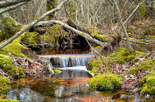 #0089 - Squam Waterfall
