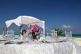 Мы стильно оформим свадебную церемонию в Майами, декорации цветами и лентами, кристалами