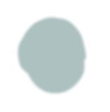 Disque%20vert%20fonce%20lisse_edited.png