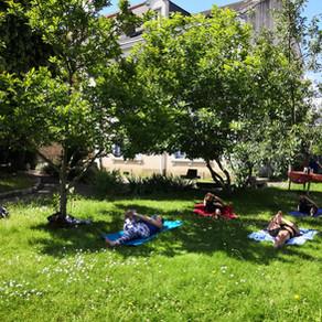 Reprise des cours de yoga en plein air