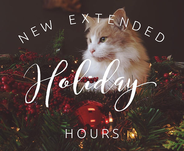 Holiday Hours Pip.jpg