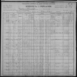 1900 census Town of Broohaven (Setauket)