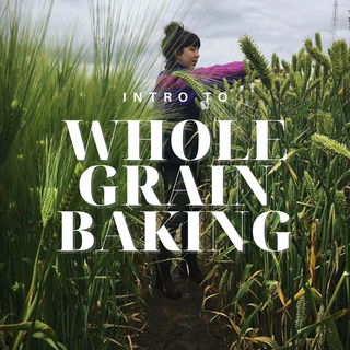 Intro to Whole Grain Baking