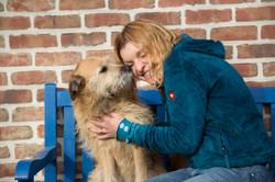 Beziehung Hund Besitzer