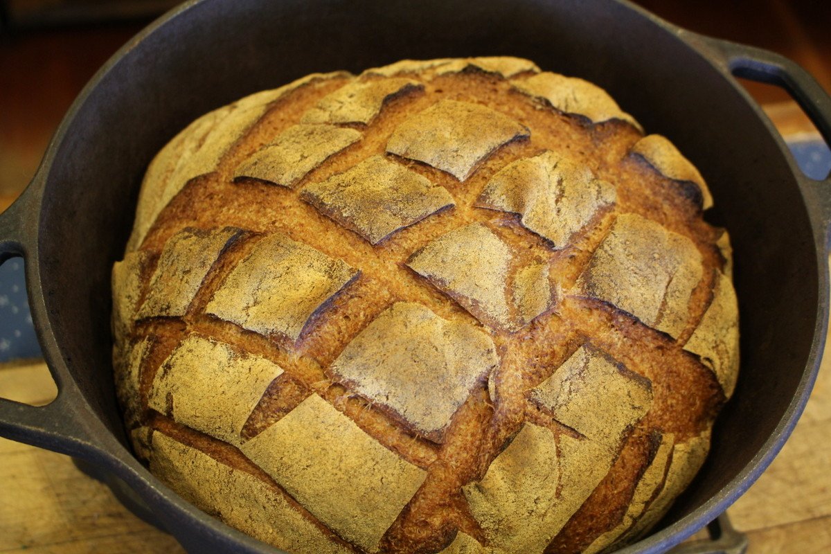 Whole grain boule