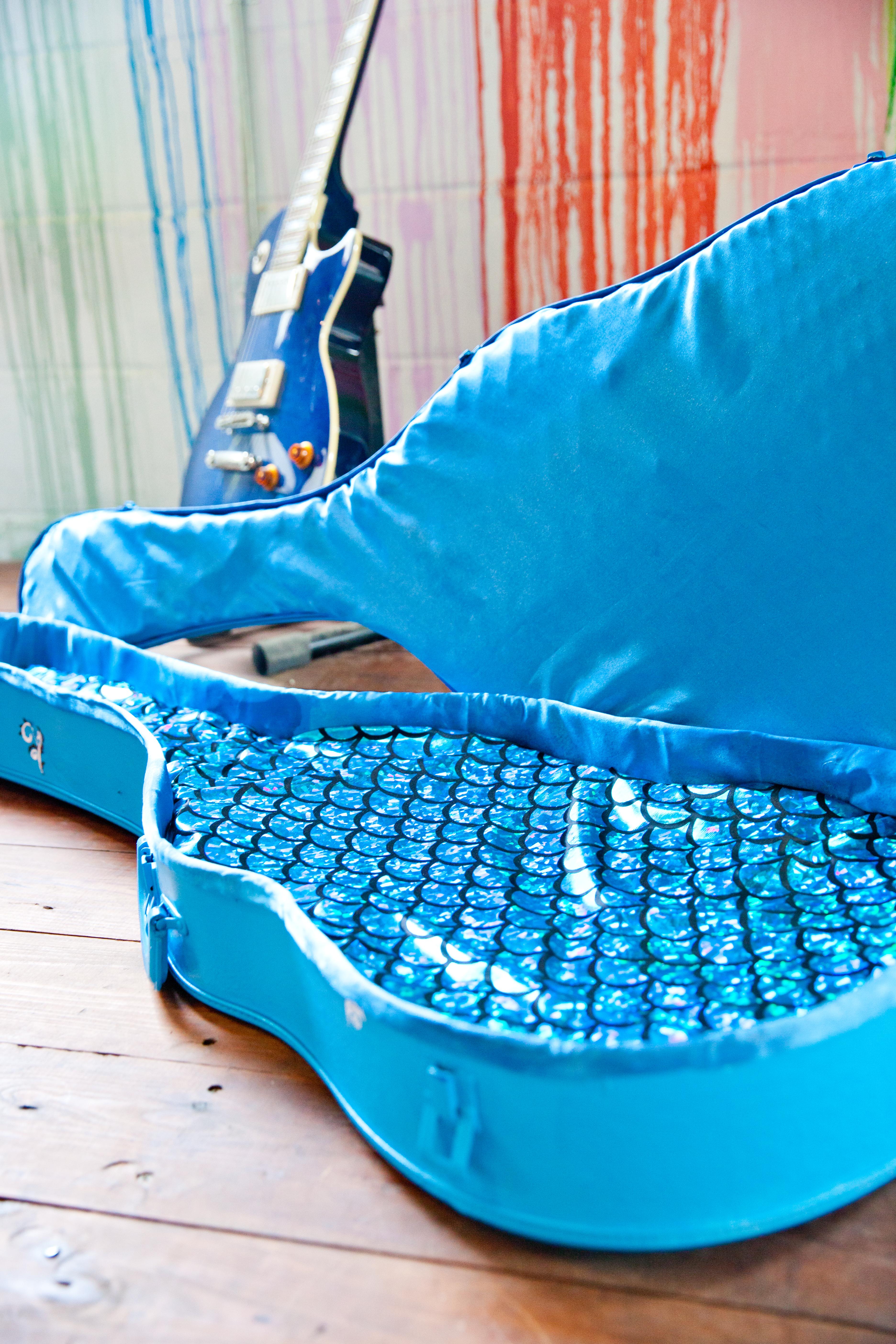Custom Cat Bed Guitar Case