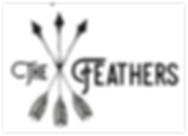 The Feathers Logo Opt 2 inverted .png