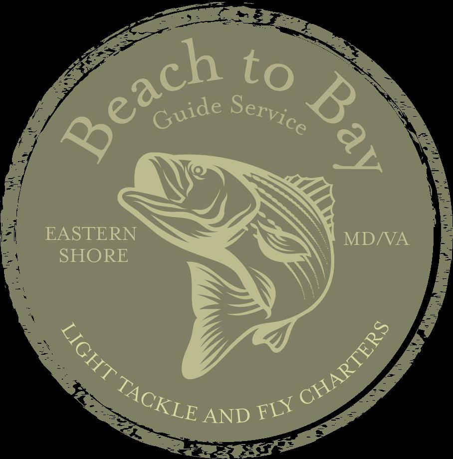 BeachtoBay-3