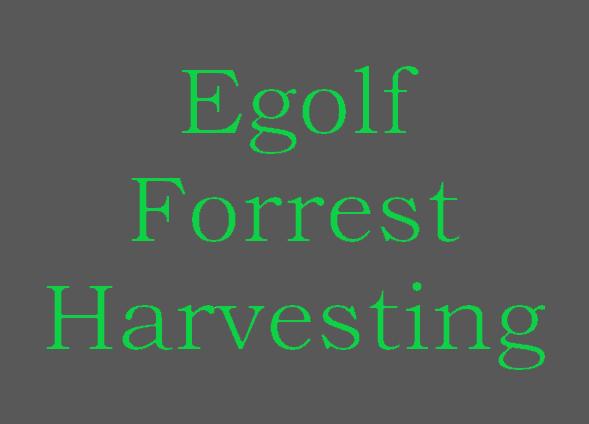 Egolf Forrest Harvesting