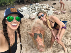 Pig Island in Exuma, Bahamas