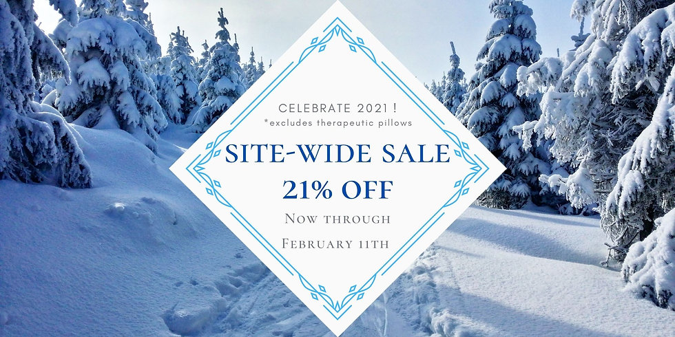Winter SiteWide Sale - Website - Take 3.