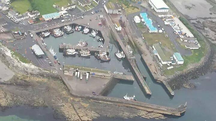 tom mahoods helecopter trip over the harbour.jpg