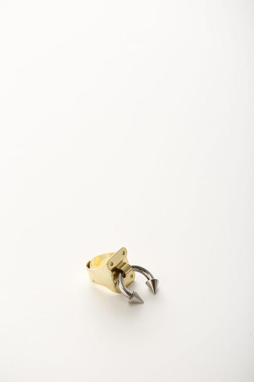 HG-Ring43. Pleasure Chest Ring.