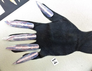 Frankenstein's Fingernails by Sarah Oakden