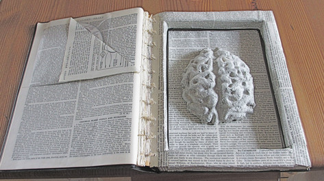 Bring Me The Brain of Pliny the Elder