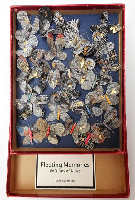 Fleeting Memories of 60 Years of News by Veronica Hilton