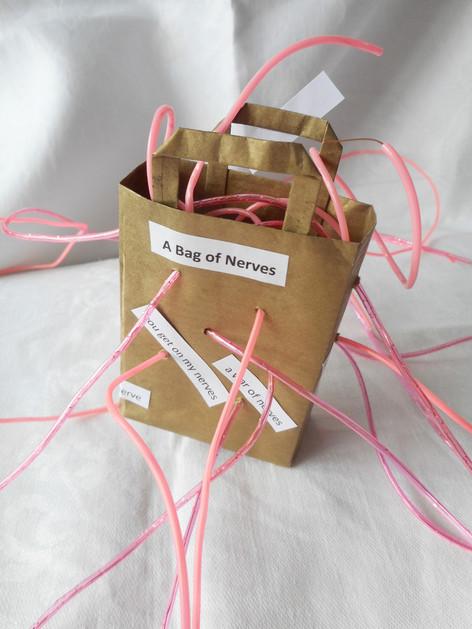 Bag of Nerves
