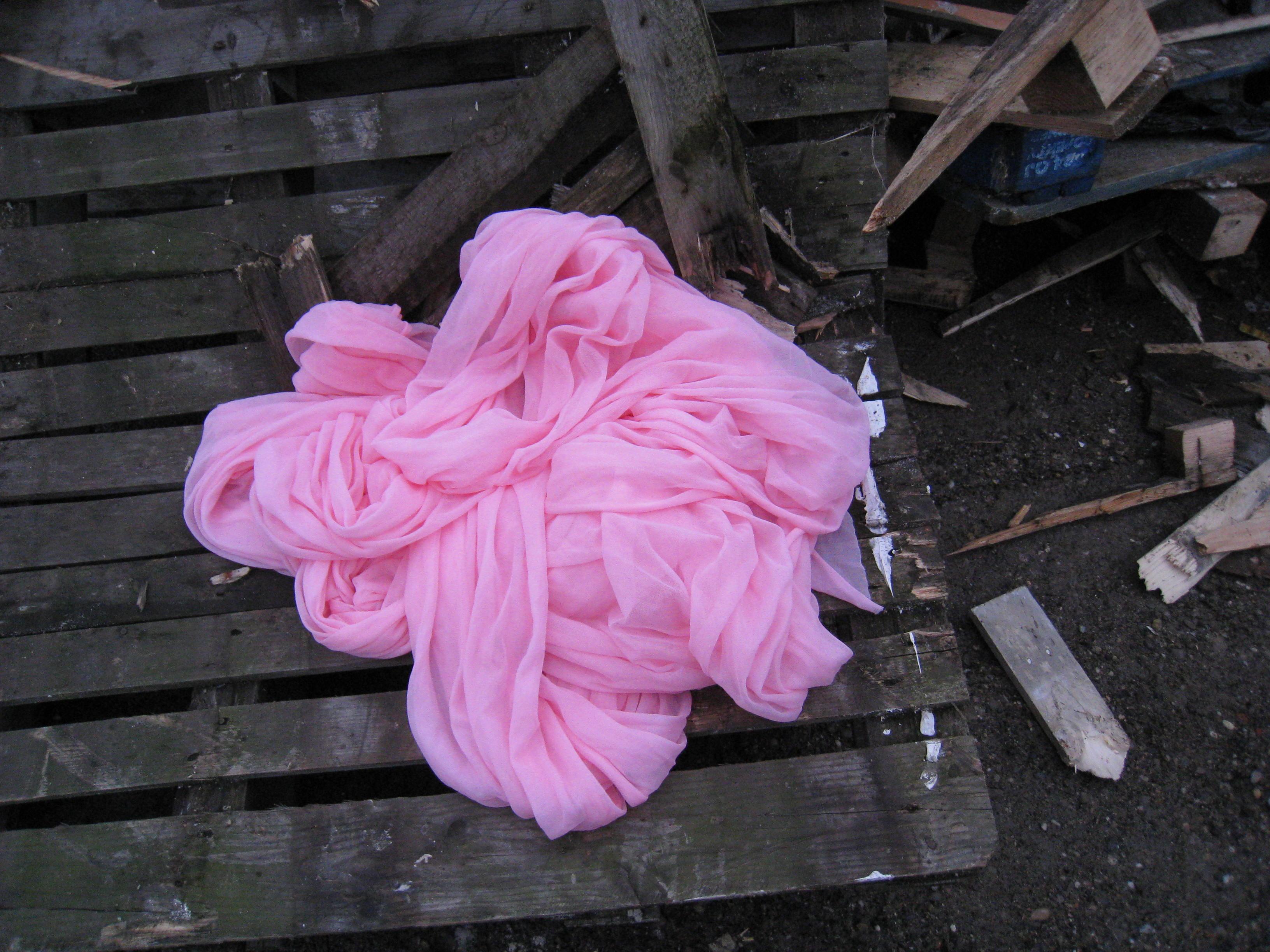 Pink Veil au port 6