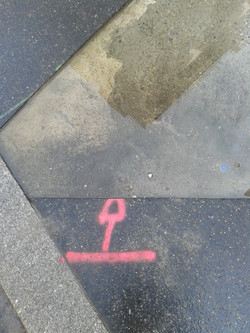 Pink Signs 1