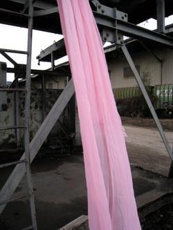 Pink Veil au port 1