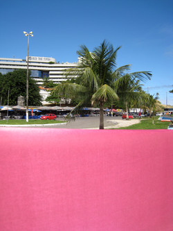 Pink Veil Brazil 1