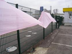 Pink Veil au port 9