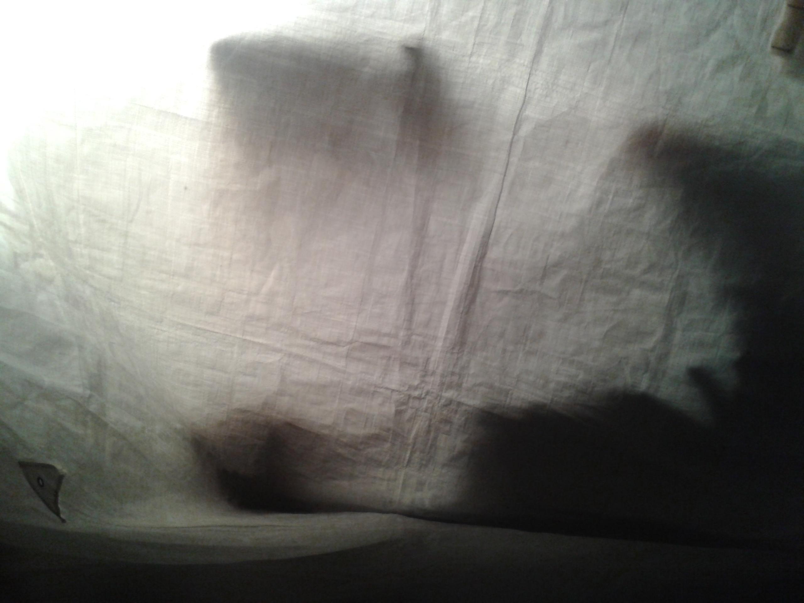 Ghost Shadow 13