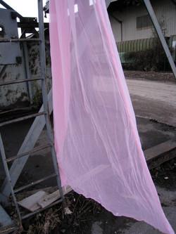 Pink Veil au port 2