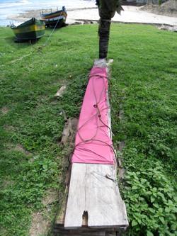 Linea Pink Brazil a