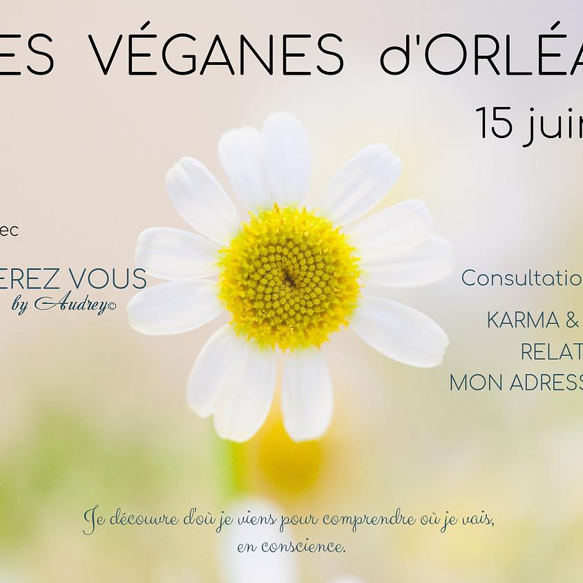 Consultations gratuites Rey-générez vous - Fêtes Véganes d'Orléans 2019