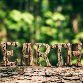 Une identité originelle plutôt rare : les EARTHSEEDS