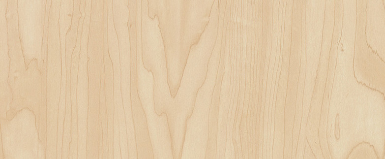Manitoba Maple 7911-60